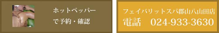 hotpa_yoyaku00216